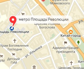 Вызов ветеринара на дом в районе метро Площадь Революции