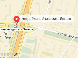 Вызов ветеринара на дом в районе метро Улица академика Янгеля