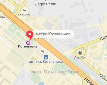 Вызов ветеринара на дом в районе метро Котельники