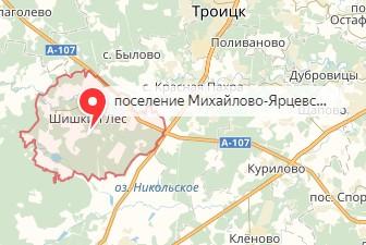 Вызов ветеринара на дом в район Михайлово-Ярцевское