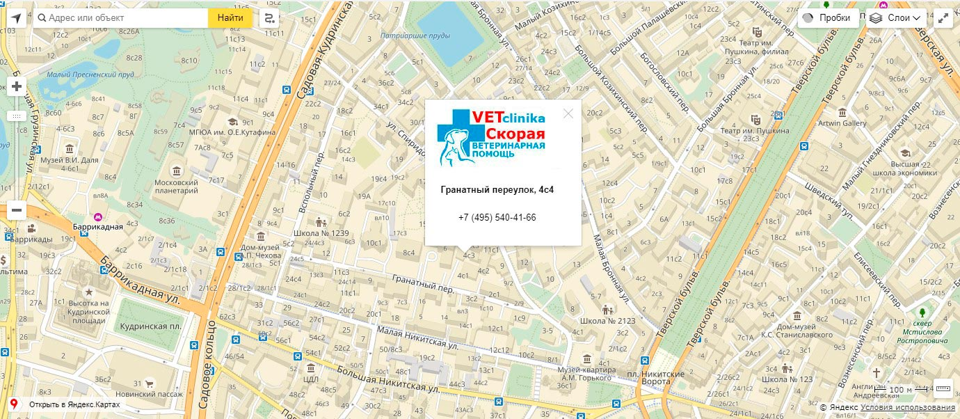 Вызов ветеринара на дом в Москве круглосуточно!