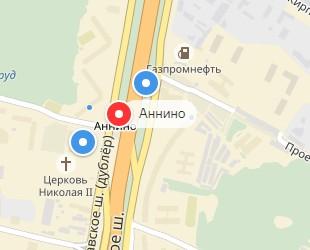 Вызов ветеринара на дом в районе метро Аннино