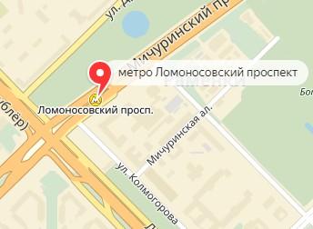 Вызов ветеринара на дом в районе метро Ломоносовский проспект