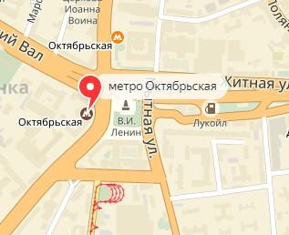 Вызов ветеринара на дом в районе метро Октябрьская