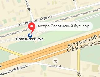 Вызов ветеринара на дом в районе метро Смоленская