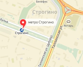 Вызов ветеринара на дом в районе метро Строгино