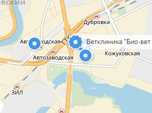 Вызов ветеринара на дом в районе метро Автозаводская