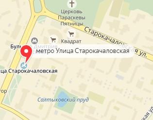 Вызов ветеринара на дом в районе метро Улица Старокачаловская