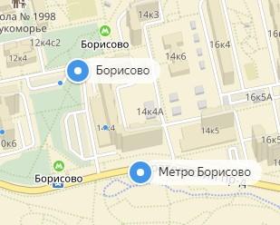 Вызов ветеринара на дом в районе метро Борисово