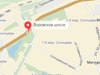 Вызов ветеринара на дом в районе метро Боровское шоссе
