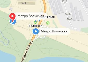 Вызов ветеринара на дом в районе метро Волжская