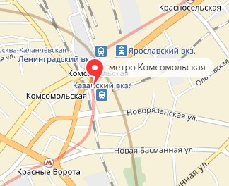 Вызов ветеринара на дом в районе метро Комсомольская