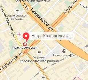 Вызов ветеринара на дом в районе метро Красносельская