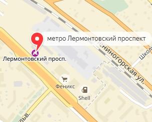 Вызов ветеринара на дом в районе метро Лермонтовский проспект