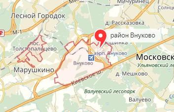 Вызов ветеринара на дом в район Внуково