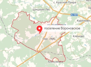 Вызов ветеринара на дом в район Вороновское
