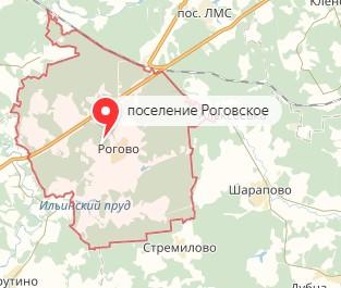 Вызов ветеринара на дом в район Роговское